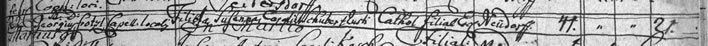 Death register entry Susanna Schubert