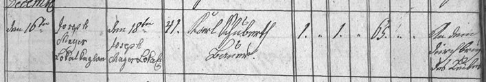 Death register entry Carl Schubert