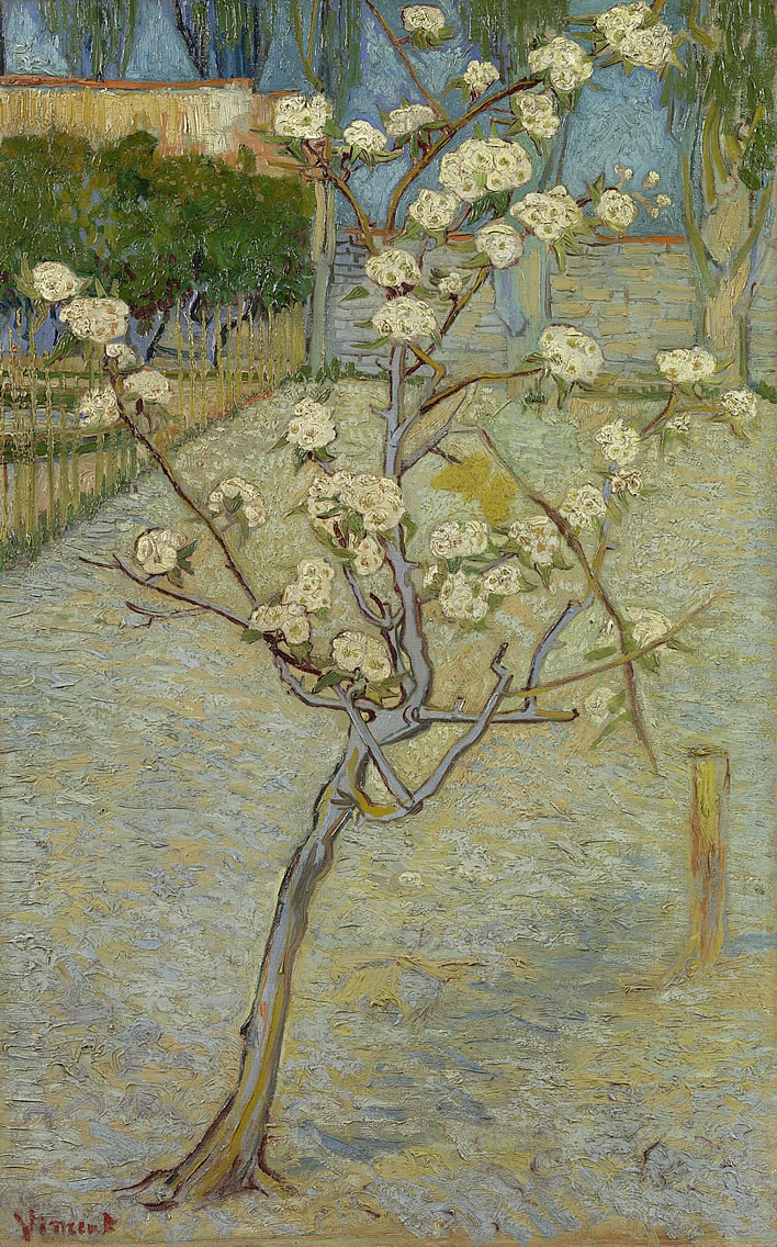 Vincent van Gogh, Small Pear Tree in Blossom, 1888