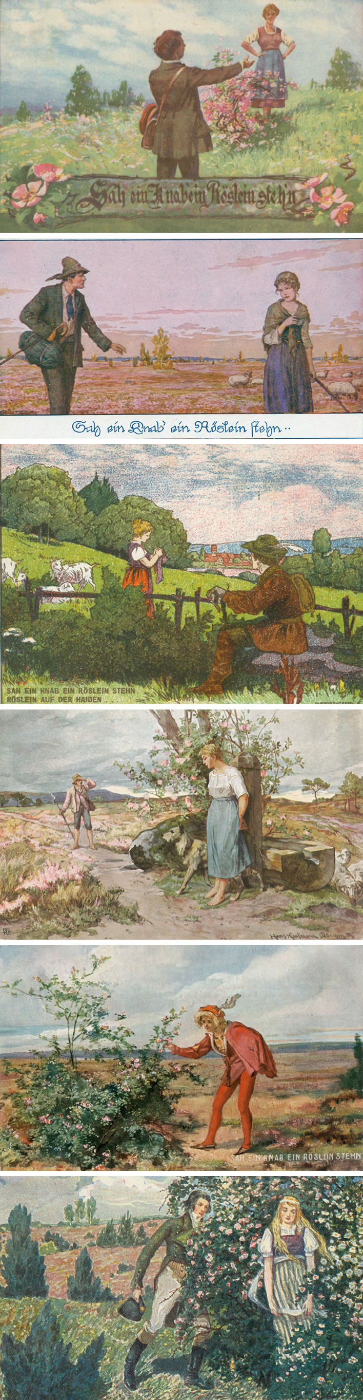 'Heidenröslein' illustrations on postcards