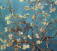 Vincent van Gogh, 'Branch of an Almond Tree in Blossom', 1890.