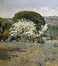 Aureliano de Beruete y Moret, 'Flowering Hawthorn', ND.